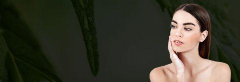 Slovenska konoplja je vir do zdravja
