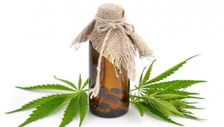 Prednost naravnih kanabinoidov