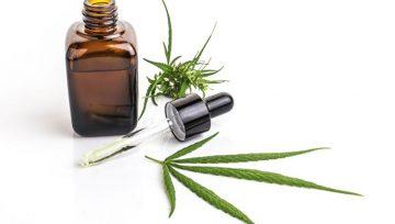 CBD izdelki s polnim spektrom kanabinoidov